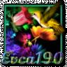 evca190