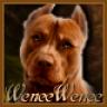 WeneeWenee