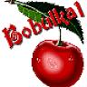 Bobulka1