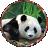 ]Panda[