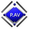 P.AV_VRU