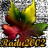 Radu2002